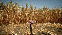 Mudanças climáticas vão aumentar migração de centro-americanos