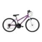 Find a Mountain Bike at an Amazing Price