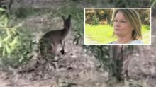 Woman reveals the sad story behind this photo of a kangaroo