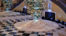 Will you be opting for an upside down Christmas tree this festive season?