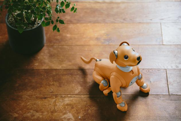 Sony's Aibo robot will now greet you at the front door