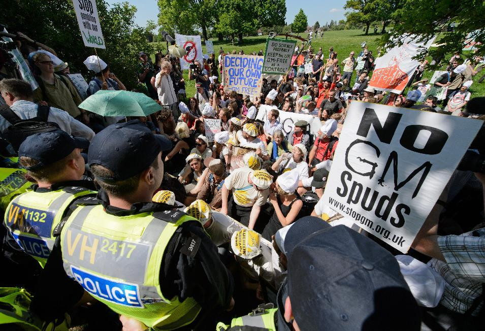 Demonstrators stage a sit-in to protest an experiemntal trial of genetically modified wheat in Harpenden, Hertfordshire, on May 27, 2012 (AFP Photo/Leon Neal)