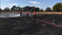 Grass fire warning after football pitch-sized area of Bushy Park goes up in flames