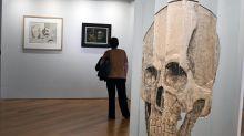 A Toulouse, une curieuse exposition de crânes miniatures