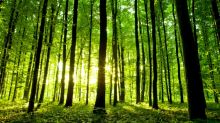 Here Is What Chou Associates Management Thinks Of Resolute Forest Products Inc. (RFP)
