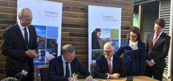 Tasmanian forestry deal extended