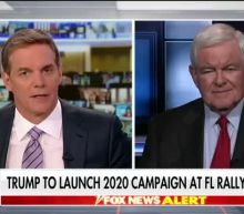 Newt Gingrich breaks down President Trump's reelection chances in 2020