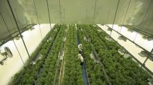 Canopy Growth to acquire skin-care company This Works for $73.8 million
