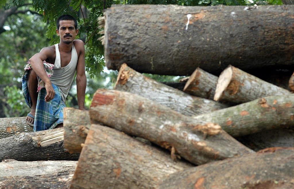 Greenpeace has clashed with the Indian government over the impact of deforestation and nuclear projects (AFP Photo/Deshakalyan Chowdhury)
