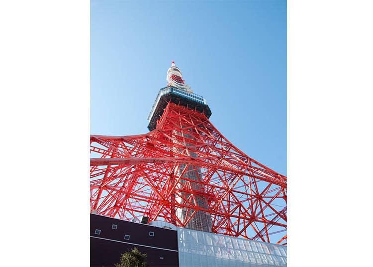高達333m的電坡塔。可由SKYBUS行車方向的左手邊眺望。