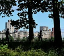 Anger as white woman reports black birdwatcher in Central Park to police