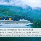 Norwegian and Royal Caribbean Launch New 'Healthy Sail Panel' to Make Cruises Safer