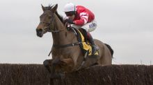 Top jumper Coneygree retired after Ascot