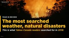 The most searched weather, natural disasters of 2018