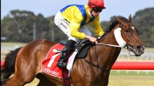 Price, Kent Jr train four-timer at Sandown