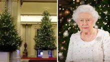 Buckingham Palace unveils Christmas trees