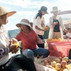 Pinduoduo doubles agricultural GMV to record 270 billion yuan in 2020