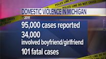 Domestic violence occurrences in Michigan