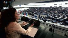 British MEP disrupts European Parliament to back striking interpreters