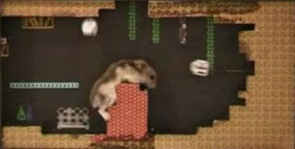 First footage of Hamster Quest: Wheel of Respite