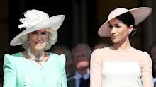 Did Camilla Parker Bowles just borrow Meghan Markle's handbag?