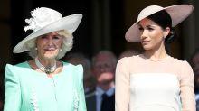 Did Camilla Parker Bowles just borrow Meghan Markle's handbag?