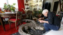 Frenchman Shares Home With 400 Reptiles Including Alligators & Rattlesnakes
