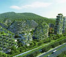 China's verdant 'forest city' will fight pollution with a million plants
