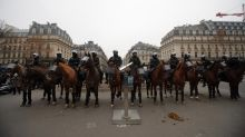 Paris police scuffle with protesters