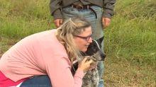 Heldenhafter Hund rettet Mädchen