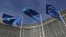 EU seeks global standards for AI, civil rights groups fret
