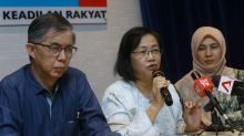 Proof is in the pudding, Pakatan leaders say about 'unsustainable 'manifesto