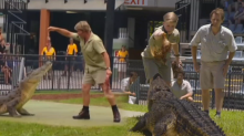 Robert Irwin has officially stepped into his dad's shoes as the new Crocodile Hunter