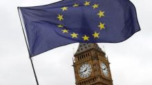 Britain looking at creating new body for EU citizens' rights - Sky