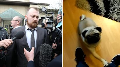 Man fined for video of dog giving Nazi salutes