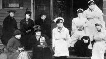 Cuando se recomendó el uso de mascarilla en las mascotas durante la pandemia de gripe de 1918