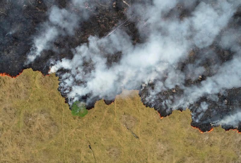 Brazilian Amazon fires surged in July