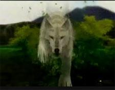 Okami: before and after cel-shading