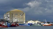 El Parlamento europeo demanda prohibir la pesca eléctrica