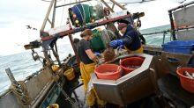 Les pêcheurs britanniques espèrent ferrer un accord de Brexit à leur avantage
