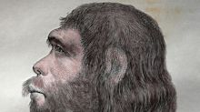 The secret Neanderthal message hidden in our eyebrows