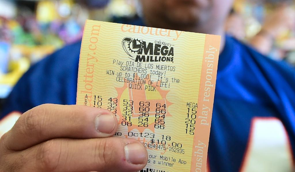 Harold and Tina Ehrenberg found the $1.8 million winning ticket, which won the southern US state's June 6 Lottery Lotto drawing, while doing some holiday cleaning (AFP Photo/Frederic J. BROWN)
