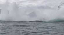 Humpback whales perform perfectly synchronised double breach