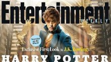 Here's a First Look at 'Harry Potter' Prequel 'Fantastic Beasts and Where to Find Them'