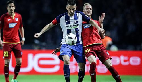 Bundesliga: Ibisevic übt Kritik an Schiri