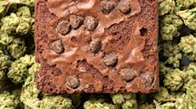 High school cheerleader may face felony charges after allegedly bringing pot brownies to school to win homecoming queen votes
