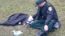 Photo of sheriff's deputy comforting dog that was hit by a car goes viral
