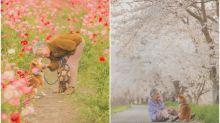 【相集】日本攝影師超治癒相集 祖母與柴犬置身花海