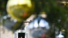 Papa: corruzione, xenofobia e razzismo rovinano la politica
