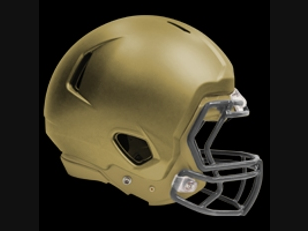 Football helmet with the ProTech device.